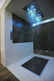 Cool Showers For Bathrooms 29 Best Cool Showers Images On Pinterest Bathroom Showers And