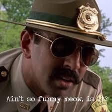 Super Troopers Meme - super troopers meow imgur