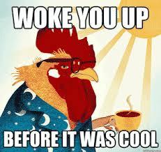 Rooster Meme - rooster meme woke you up before it was cool sleep pinterest