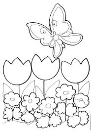 coloriage le papillon choisit des fleurs