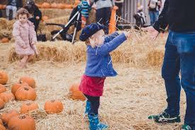 the pop up farm u2013 hertfordshire u2013 pumpkin patch review