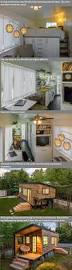 tiny house without a loft bed on the ground floor tiny house