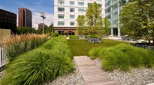 zen associates landscape design rooftop garden zen associates