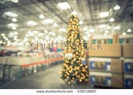 christmas tree industry stock images royalty free images