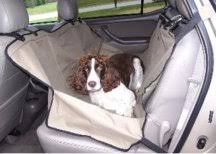 pet accessories in your car boat newdavincis com great