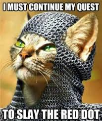 Talking Cat Meme - warriors with pictures by gigglepaw blogclan