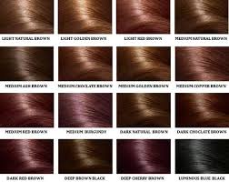 light golden brown hair color chart brown hair color chart colour chart chocolate brown and hair coloring