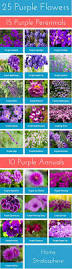 list of fall flowers 25 purple flower ideas for your garden pots and planters flower