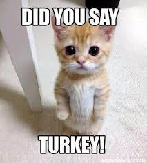 Turkey Memes - meme creator did you say turkey meme generator at memecreator org
