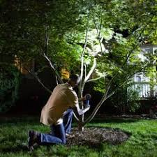 How To Do Landscape Lighting - how to light the small garden http smallgardenideas net how to
