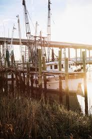 savannah u0027s spots a surging tide u2013 garden u0026 gun