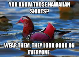 Hawaiian Memes - hawaiian memes 28 images when your friend is going to hawaii