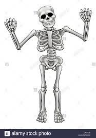halloween cartoon skeleton grim reaper cute cartoon skeleton halloween vector illustration