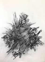 charcoal drawing nature pencil shading drawings nature pencil