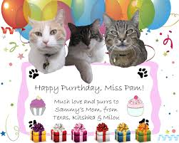 wine birthday wishes birthday wishes for cats photo and card pictures happy birthday