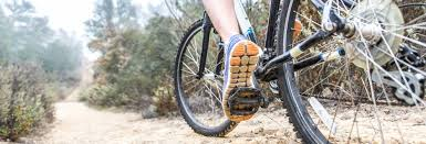 Best Bike For Comfort Best Bike Buying Guide Consumer Reports