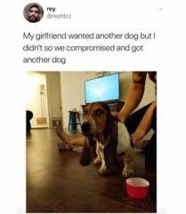 Dog Girlfriend Meme - pooo memes meme xyz