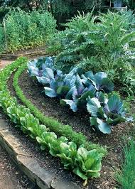 Kitchen Garden Designs 173 Best Vegetable Garden Design Tips Diy Images On Pinterest