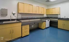 new england lab