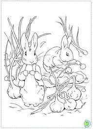 peter rabbit rabbit shopping
