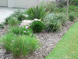for your yard exterior best gardens on a budget easy backyard best