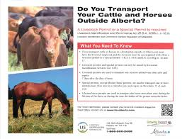traveling outside of alberta horses and cattle now need a
