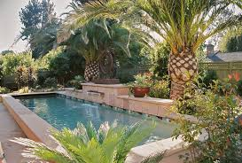 buddha landscape design pool tropical with palm trees lap pool