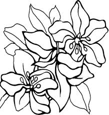 cute spring flower coloring flowers coloring pages coloring