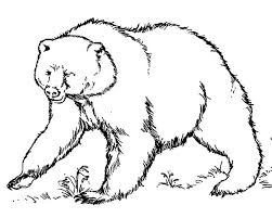 grizzly bear coloring pages free background coloring grizzly bear