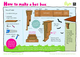 how to m helping bats around the uk the wildlife trusts