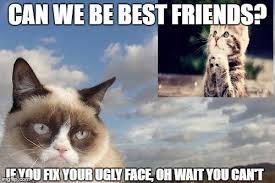 Memes Of Grumpy Cat - grumpy cat sky meme imgflip