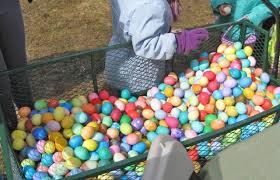 easter egg hunt eggs easter egg hunt at new pond farm in redding aspetuck news