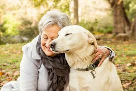the benefits of elderly owning pets agingcare