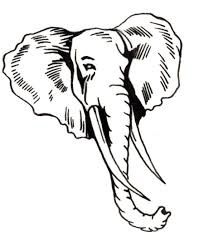 coloring download elephant head coloring page elephant head