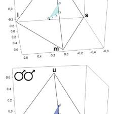 uv l short and long wavelength lizard blues blue body colouration and pdf download available
