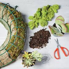 succulent wreath how to make a succulent wreath southern living
