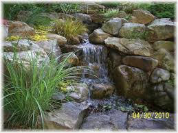 123 best goldfish ponds and water gardens images on pinterest