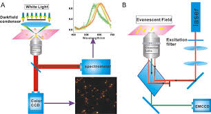 dark field microscopy dark field microscopy in imaging of plasmon resonant nanoparticles