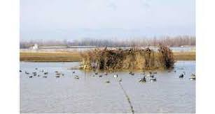 How To Make A Layout Blind My Ultimate Duck Blind