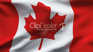 Canada Flag Colors Creased Satin Canada Flag In Wind In Slow Motion Royalty Free