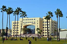Kafrelsheikh University