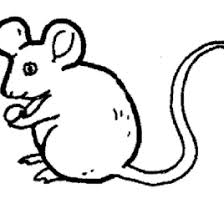 coloring page of a rat rat coloring page az coloring pages coloring page rat in coloring