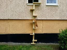 katzenleiter balkon 64 best katzenleiter images on cats cat stairs and