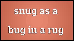 Bug Na Rug 100 Bug Rug Fan Favorite Rug Bug Returns To Big Top