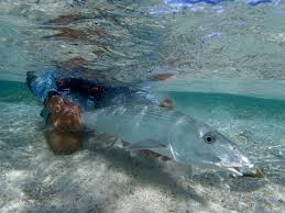 fliegenfischen fly fishing bonefish christmas island kiritimati gt