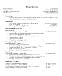Template For College Resume 5 Good Examples Of College Resumes Budget Template Letter