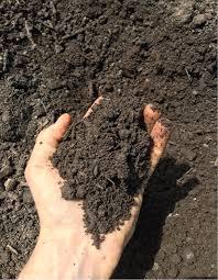 Composting Pictures by Aerobic Composting U2014 Swiss Bio Farmer