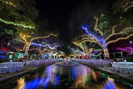 Lights In Houston Reserve The Entire Zoo Houston Zoo