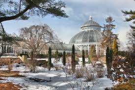 Botanical Garden In The Bronx Winter At The New York Botanical Gardens Forensic Traveller