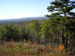 Alabama forest images Talladega national forest most breathtaking national forest in jpg